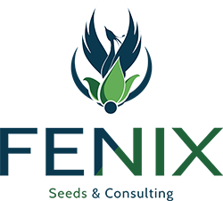 Fenix - Seed & Consulting