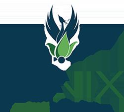 Fenix | Ricerca, produzione e vendita sementi